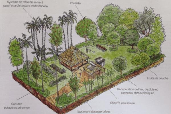 Design Permaculture