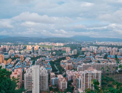 Qu'est-ce qu'une forêt urbaine ou une micro-forêt ?